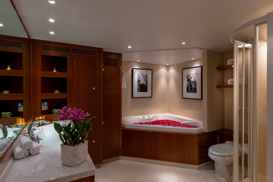 Motor Yacht Northern Sun for charter - master bathroom